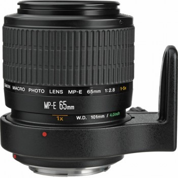 CANON MP-E 65mm f/2.8 1-5x Macro Photo