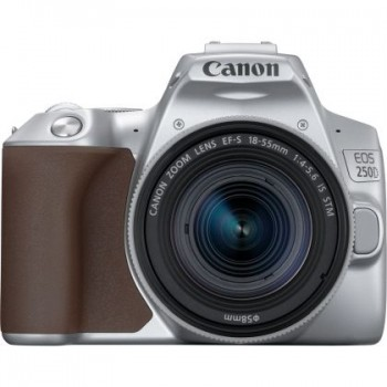 CANON EOS 250D SILVER +18-55MM 4-5.6 IS STM